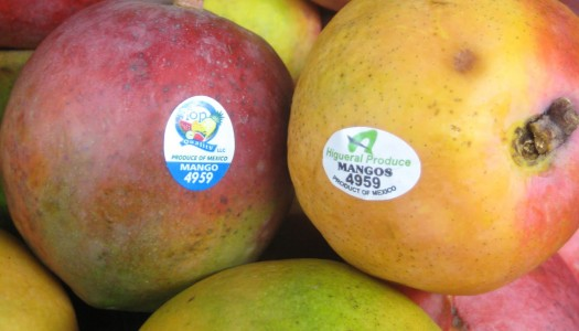Supermarket Produce Stickers and GMOs