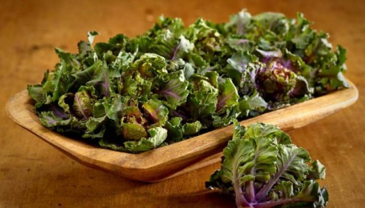 Kalettes–New Veggie on the Scene