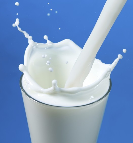 pouring milk in a glass isolated