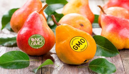 Dietitians and GMOs-Oh My!